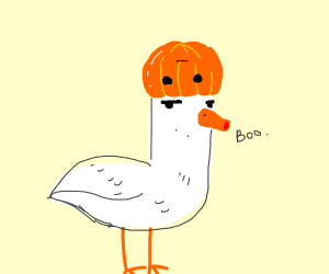 Duck with a pumpkin on its head