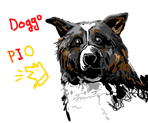 Doggo (MUST P.I.O)