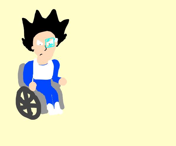 Vegeta in a Wheelchair