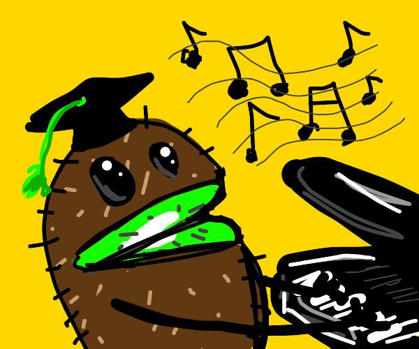 smart kiwi plays piano