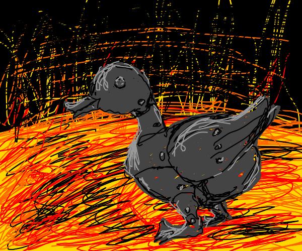 Robot duck on the sun