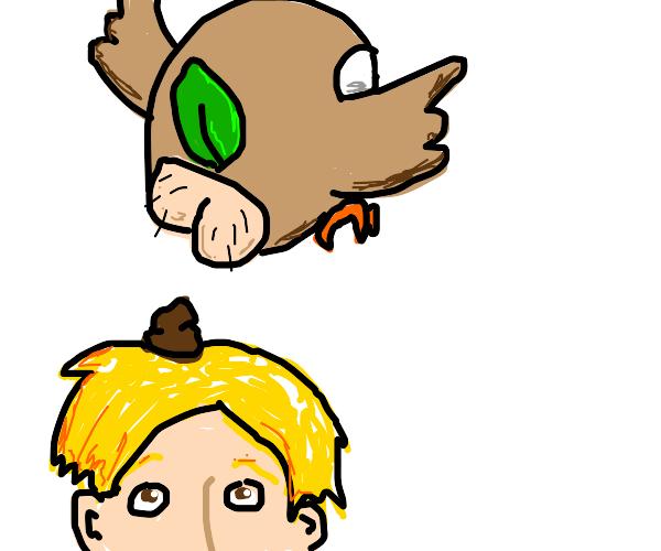 Rowlet takes a dump on your head