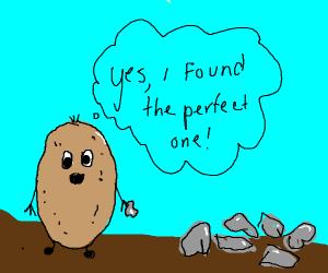 potato man finds rocks! good job mr man
