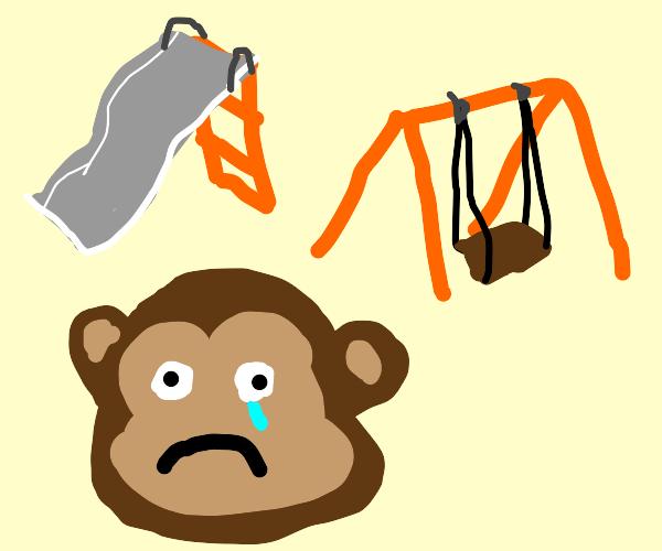 Sad monkey at park
