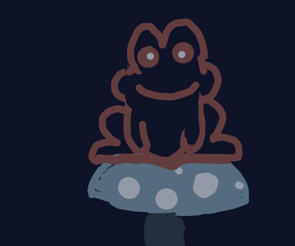 frog sitting on mushroom :]