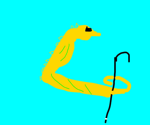 Blind seahorse using a stick