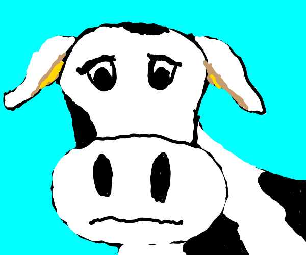 depressed cow thing