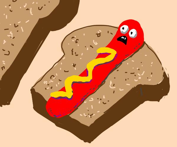 Hot dog sandwich