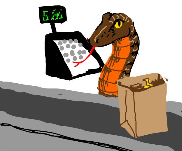 snake cashier