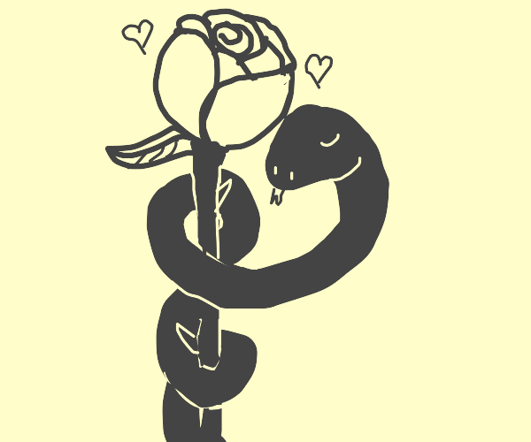 Snake and rose are madly in love