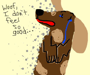 doggo doesn't feel so good