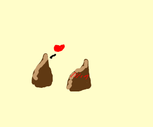 chocolate chip flirting with another choco ch
