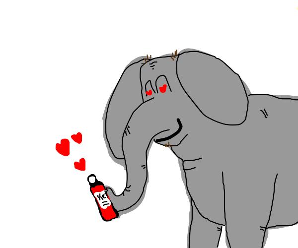 Elephant loves ketchup