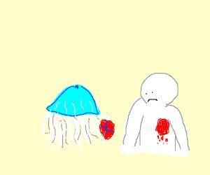 jellyfish took man heart