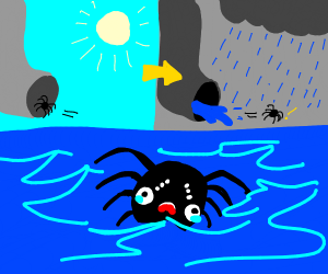 The Itsy Bitsy Spider drowned!