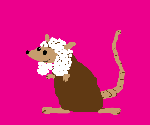 Rat with wig
