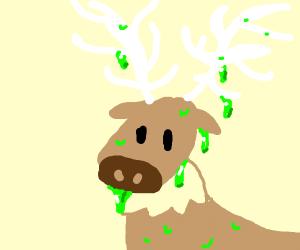 Gooey Moose