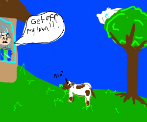 Baby cow on lawn