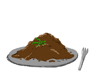 Dirt on plate