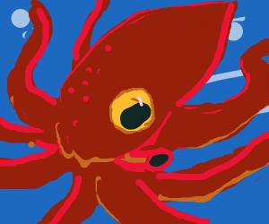 octopus(??)