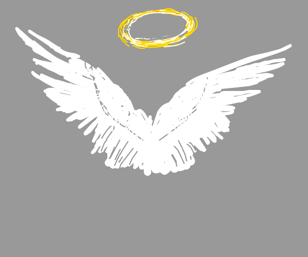 wings and a halo