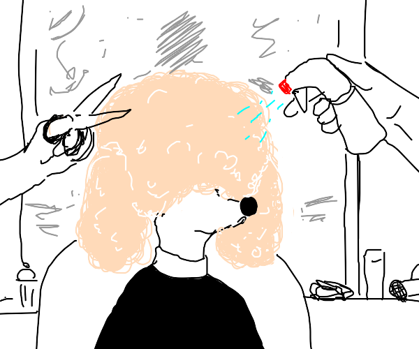 Poodle Goes to Salon