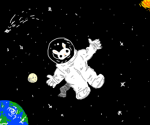 Bunny stick in space