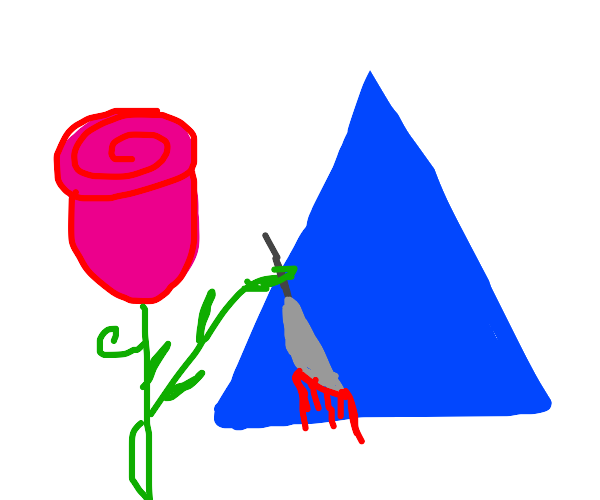 rose marring a blue triangle