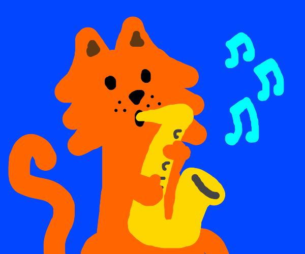 a saxaphone cat