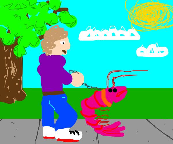 guy walking pet shrimp