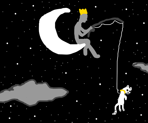 King of the moon fishes for a pet at night