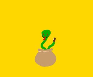 Possessed Python