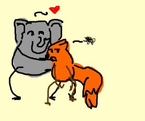 Elephant hugs fox
