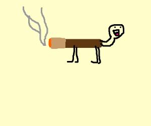 Unconventional Cigarette