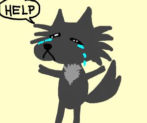 wolf cries help 4 jazziejazza
