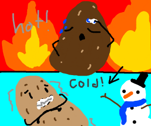 Cold potato