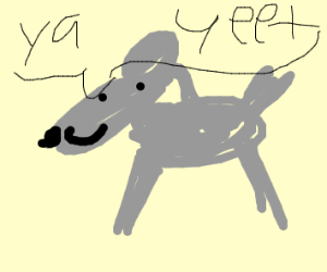 gray horse says yeet