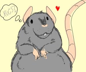 rat wants you to hug him :D