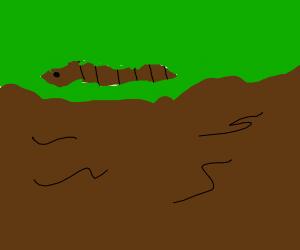 Earthworm Running