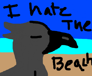 A happy crow visits the beach