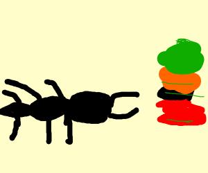 Ant Organizing