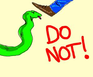 Do not step on the snek