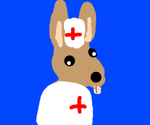 A rabbit as a nurse.