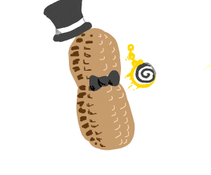 Dapper hypnotic peanut