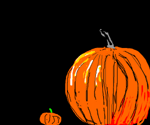 Pumpkins in detail