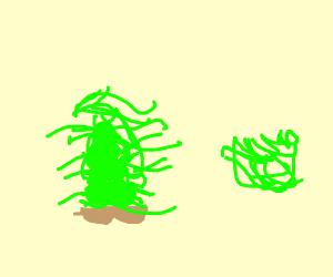 Stack of Lettuce