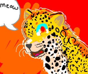 jaguar goes meow