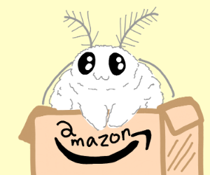 Moth in a Package