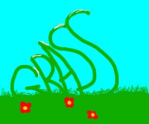 word grass