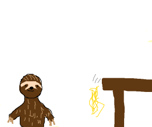 Sloth watches spaghetti fall off table